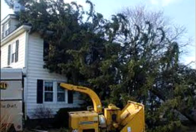 24 hour Storm Cleanup Charlottesville VA
